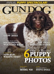 Gun Dog Cover